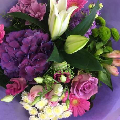 Lilac Enchantment