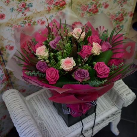 Dreamland Roses