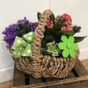Country Planted Basket